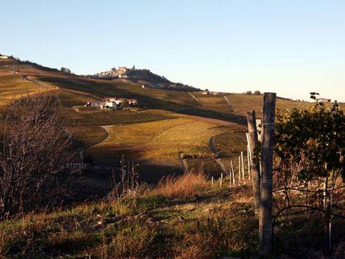 casetta_tra_le_vigne