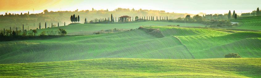 Magnifica Toscana!