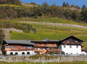 image of Hoferhof