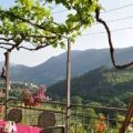Bed And Breakfast La Terrazza Del Castello