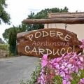 image0 of Podere carducci