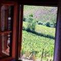 Bed And Breakfast Casale le masse