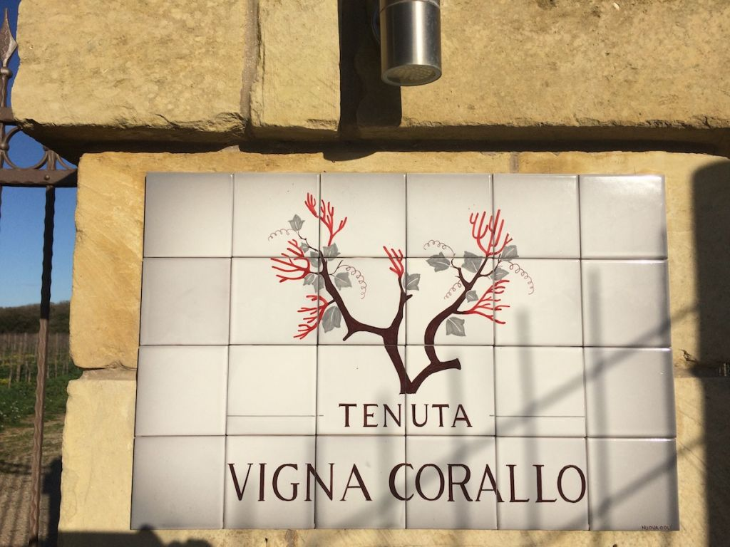 tenuta vigna corallo photo 3