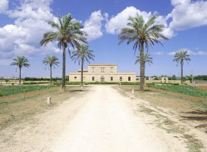 image of Masseria Galatea