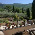 Bed And Breakfast L'AGRIFOGLIO DI ASSISI