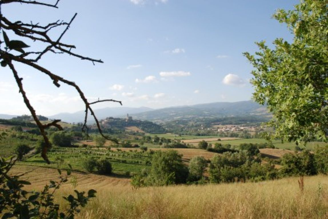 poggio a poppi photo 9