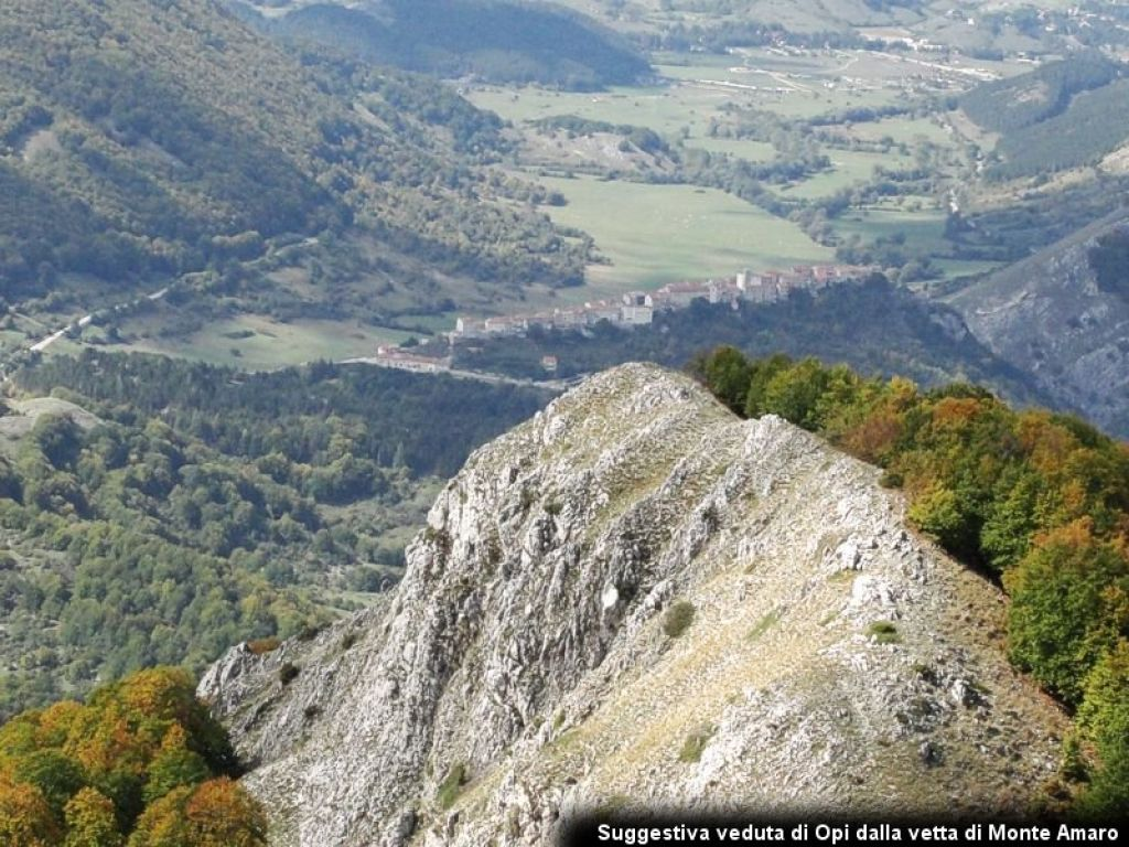 le acacie abruzzo photo 4