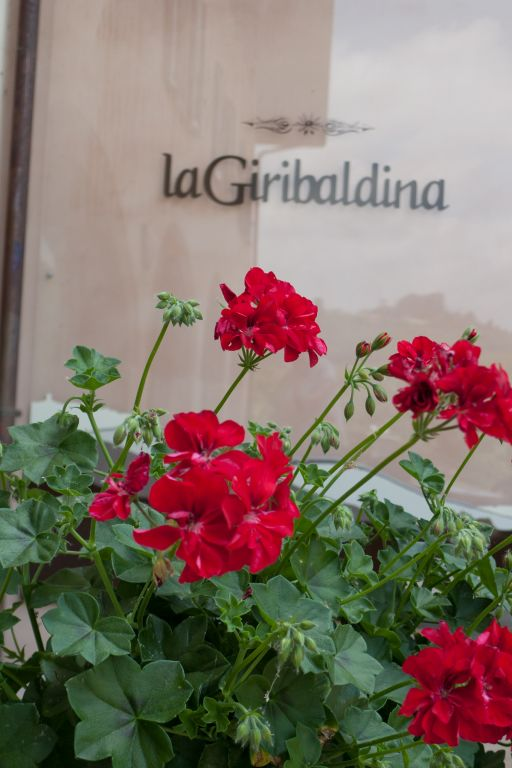 la giribaldina photo 6
