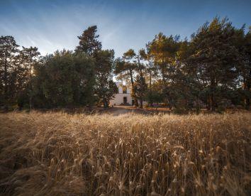 Foto18 Masseria Fracchicchi