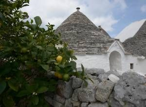 image2 of Trulli