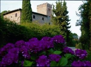 image of Castello di monsanto