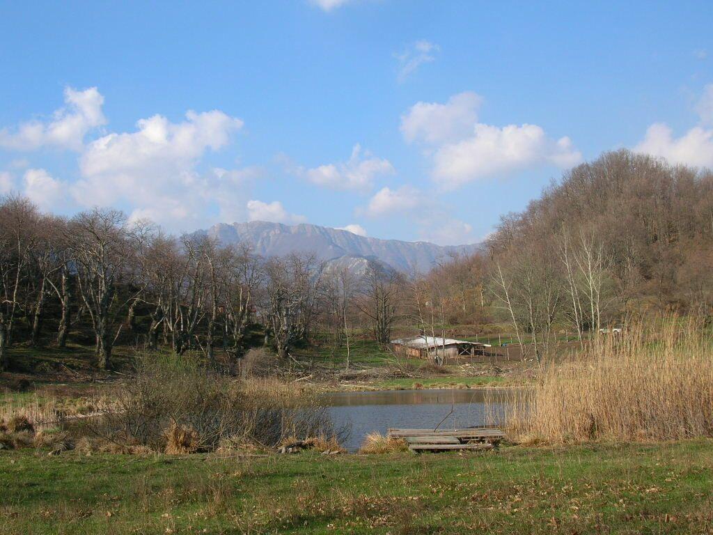 il lago photo 6