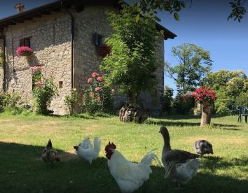 Offerte Ferragosto In Agriturismo in Emilia Romagna (3 Offerte)