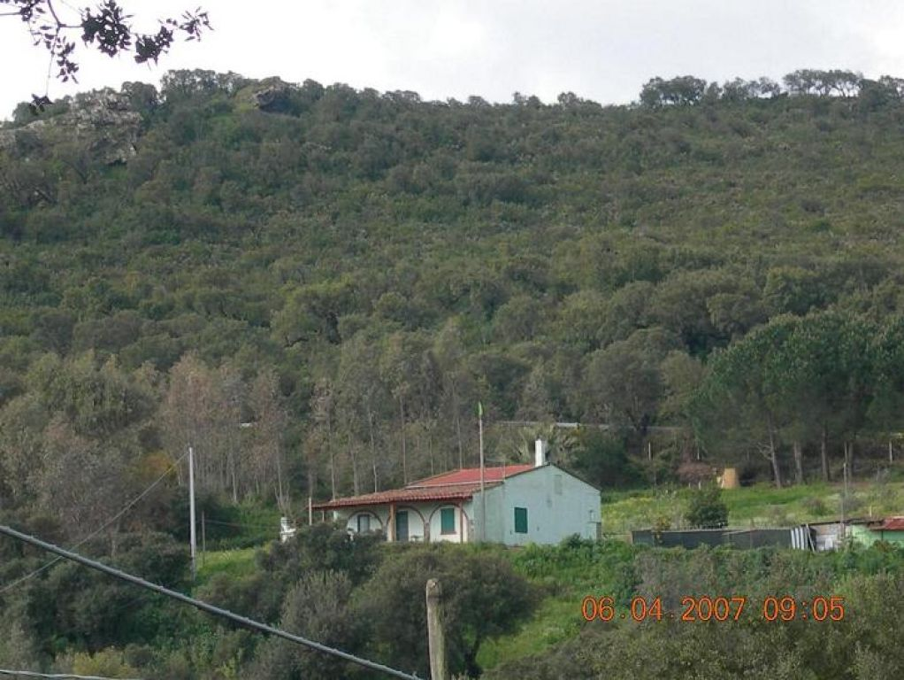 rio castangias photo 10