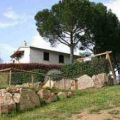 Farm-house Olivetino