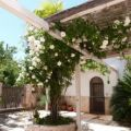 Bed And Breakfast Trullo casa rosa & casa delle mimose