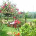 Countryside Holiday House Villa geminiani
