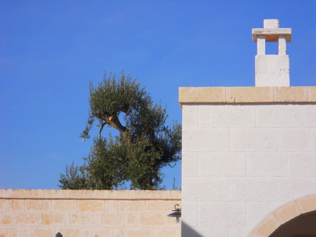 masseria de michele photo 7
