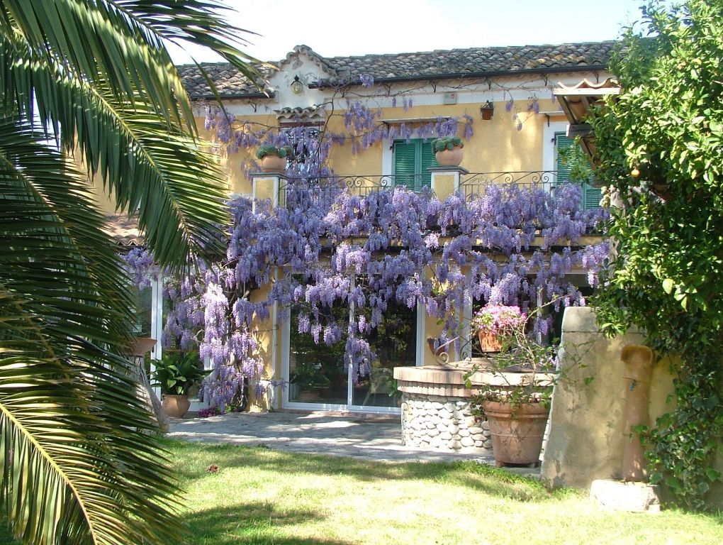 Villa Vittoria photo 1
