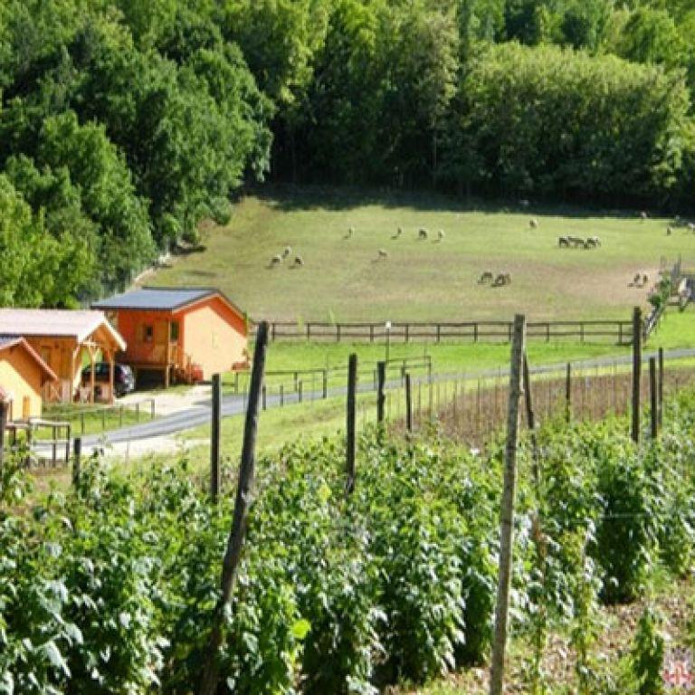 ferienbauernhof fattoria antica forconia l 39 aquila abruzzen. Black Bedroom Furniture Sets. Home Design Ideas