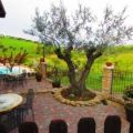 Country House Il Cascinale